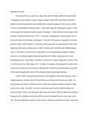 Management Game Essay