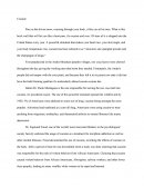 Essay on Cocaine Drug