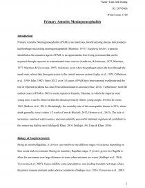 naegleria fowleri essay